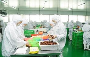 重庆四川麻辣底料、酱料,美鑫雷火电竞亚洲电竞先驱者厂贴牌、代加工出口